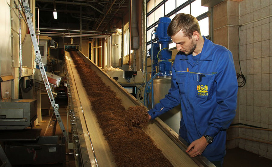Production of cigarettes at the Neman factory